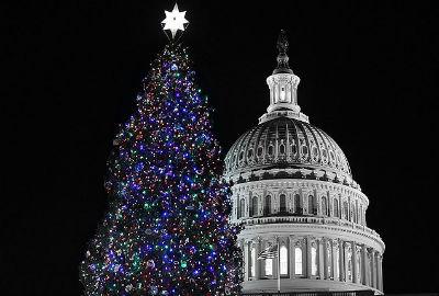 Главная елка США