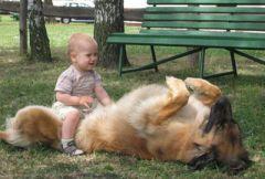 Ребенок с собакой
