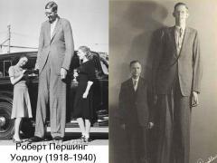 Самые высокие люди планеты